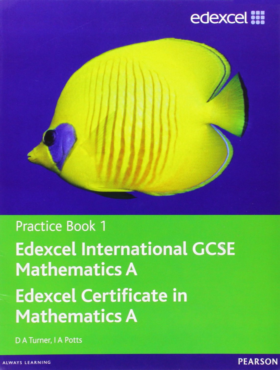 Edexcel International GCSE Mathematics A Practice Book 1: D. A. ...