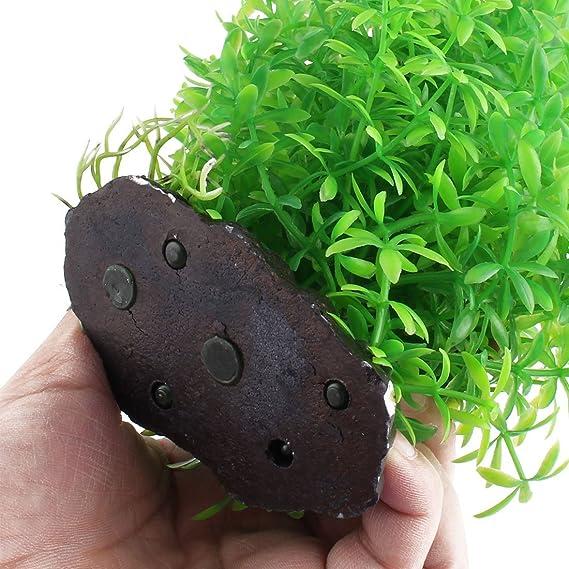 Amazon.com : eDealMax Base Stone Goldfish del acuario del tanque realista Bajo el agua de la planta acuática Hierba Decoración : Pet Supplies