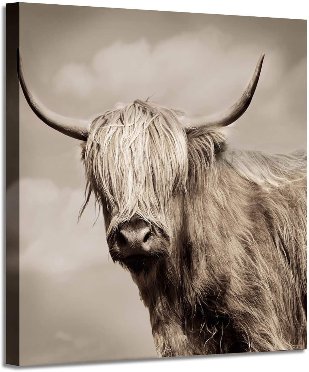 Amazon Com Bull Wall Art Yak Picture Wildlife Artwork Print Painting On Wrapped Canvas Wall Painting For Living Room 24 W X 24 H Multi Sized Posters Prints