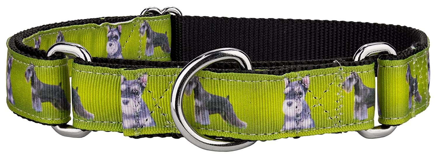 Small, 3 4 Inch Wide Country Brook Design   Schnauzer Ribbon Martingale Dog Collar Small
