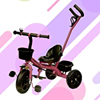 GoodLuck Baybee - 2 in 1 Convertible Baby Tricycle Kid's Trike with Parental Adjust Push Handle Children Tricycle with Seat Belt Kid's | Suitable for Boys & Girls - (1 to 5 Years) - Purple