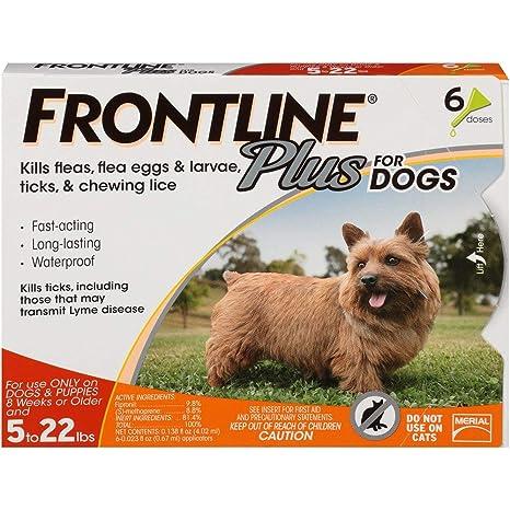Amazon.com: Pipeta Frontline Plus para control de pulgas y ...