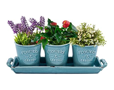 Vencer Country Rustic Turquoise Ceramic Succulent Planters   Flower Pots U0026  Handled Display Tray,Office