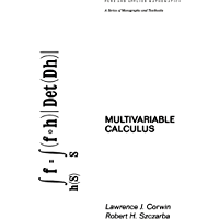 Multivariable Calculus (Chapman & Hall/CRC Pure and Applied Mathematics Book 64)