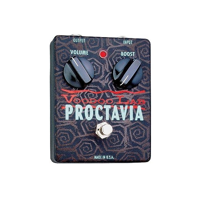 リンク:PROCTAVIA