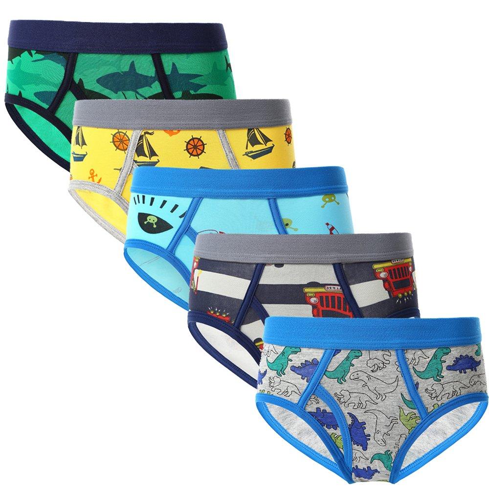 CNBABY Little Boys' Dinosaur Underwear Briefs 5-Pack