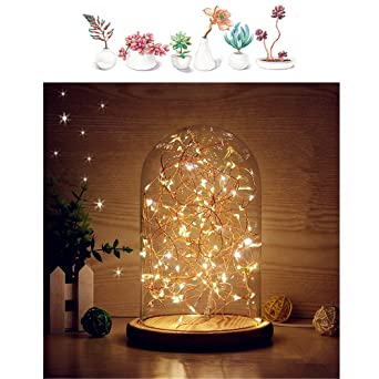 lovely mucher glass dome lamp bell jar display dome bamboo base string usb led warm white light. Black Bedroom Furniture Sets. Home Design Ideas