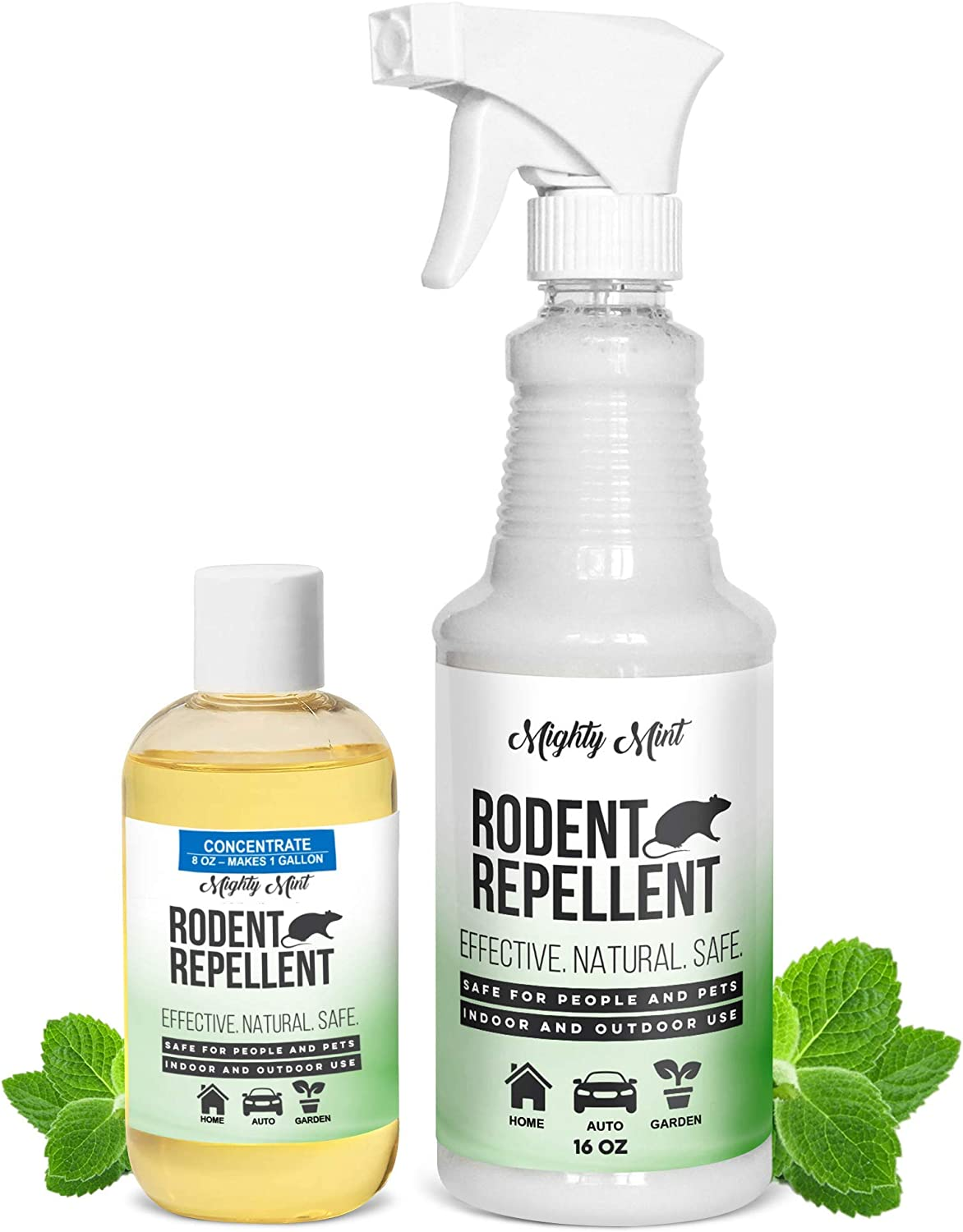Peppermint Oil Rodent Repellent Spray and Concentrate - Makes 1 Gallon, Non Toxic