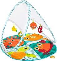 Ginásio Transportável, Fisher Price, Mattel, Fisher Price, Multicolorido