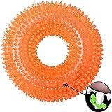 Amazon.com: Snug Rubber Dog Balls - Tennis Ball Size