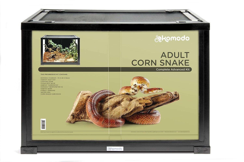 Komodo Adult Corn Snake Advanced Kit