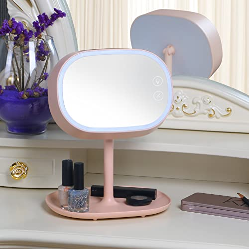 Valdler Rechargeable LED Lighted Makeup Vanity Mirror with Cosmetic Tray Table Lamp