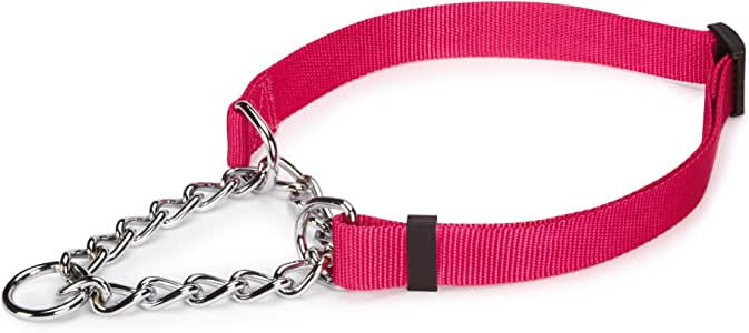 Guardian Gear Martingale Adjustable Choke-Style  Dog Collar