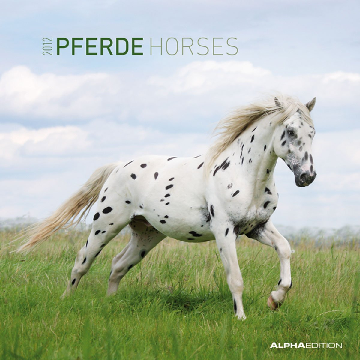 Pferde 2012. Broschürenkalender 30 x 30 cm