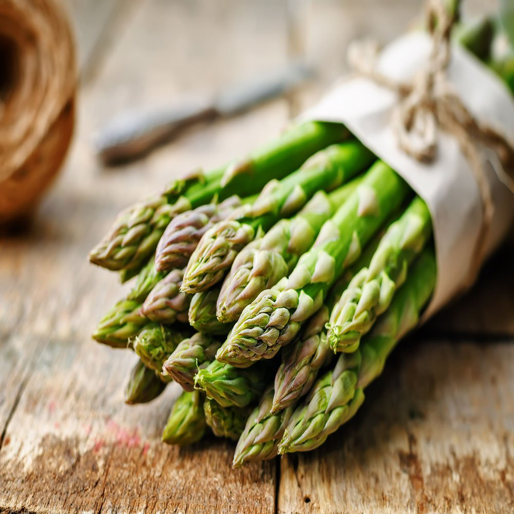 Mary Washington 25 Live asparagus bare root plants -2yr-crowns by Hand Picked Nursery (Image #1)