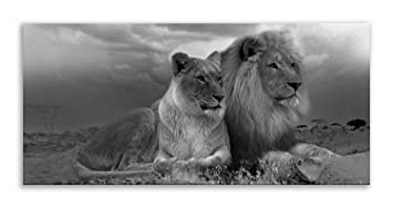 Lion Face Canvas Cat Black White Animal Panorama Wall Art Picture Home Decor
