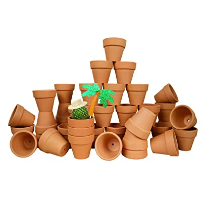 My Urban Crafts 40 Pcs Small Mini Clay Pots 2.1 inch Mini Terracotta Pots Clay Ceramic Pottery Planter Cactus Flower Pots Succulent Nursery Pots for Indoor/Outdoor Mini Plant, Crafts, Wedding Favors: Garden & Outdoor