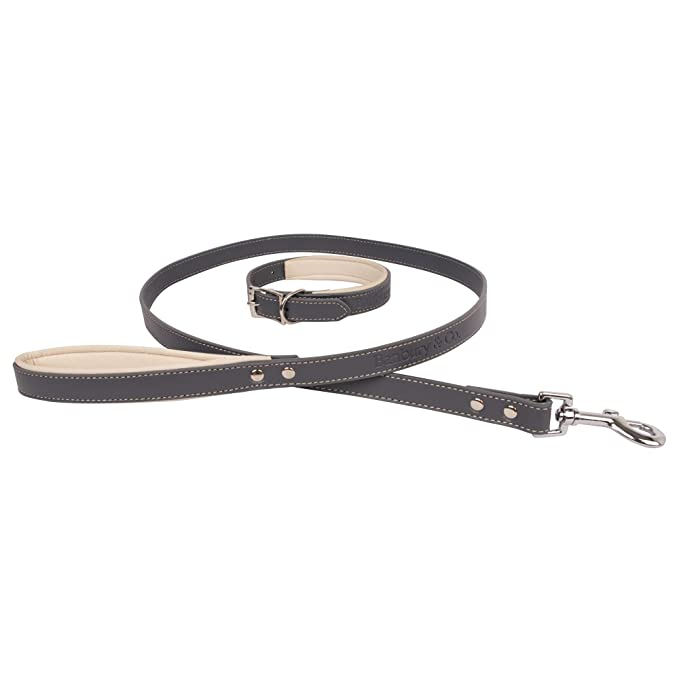 Banbury & Co Luxury Dog Collar And Lead Set (One Size) (Grey