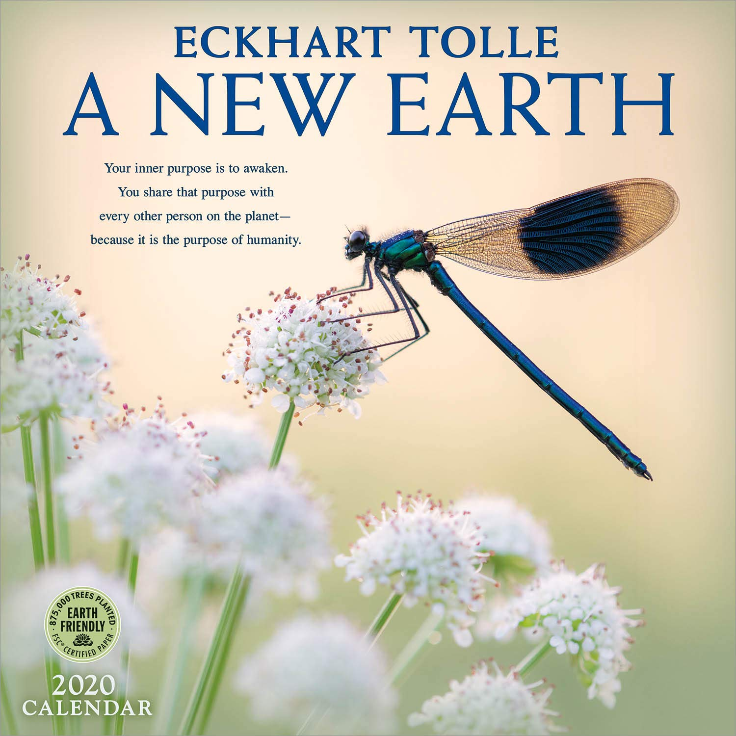 a new earth wall calendar a year of inspirational quotes