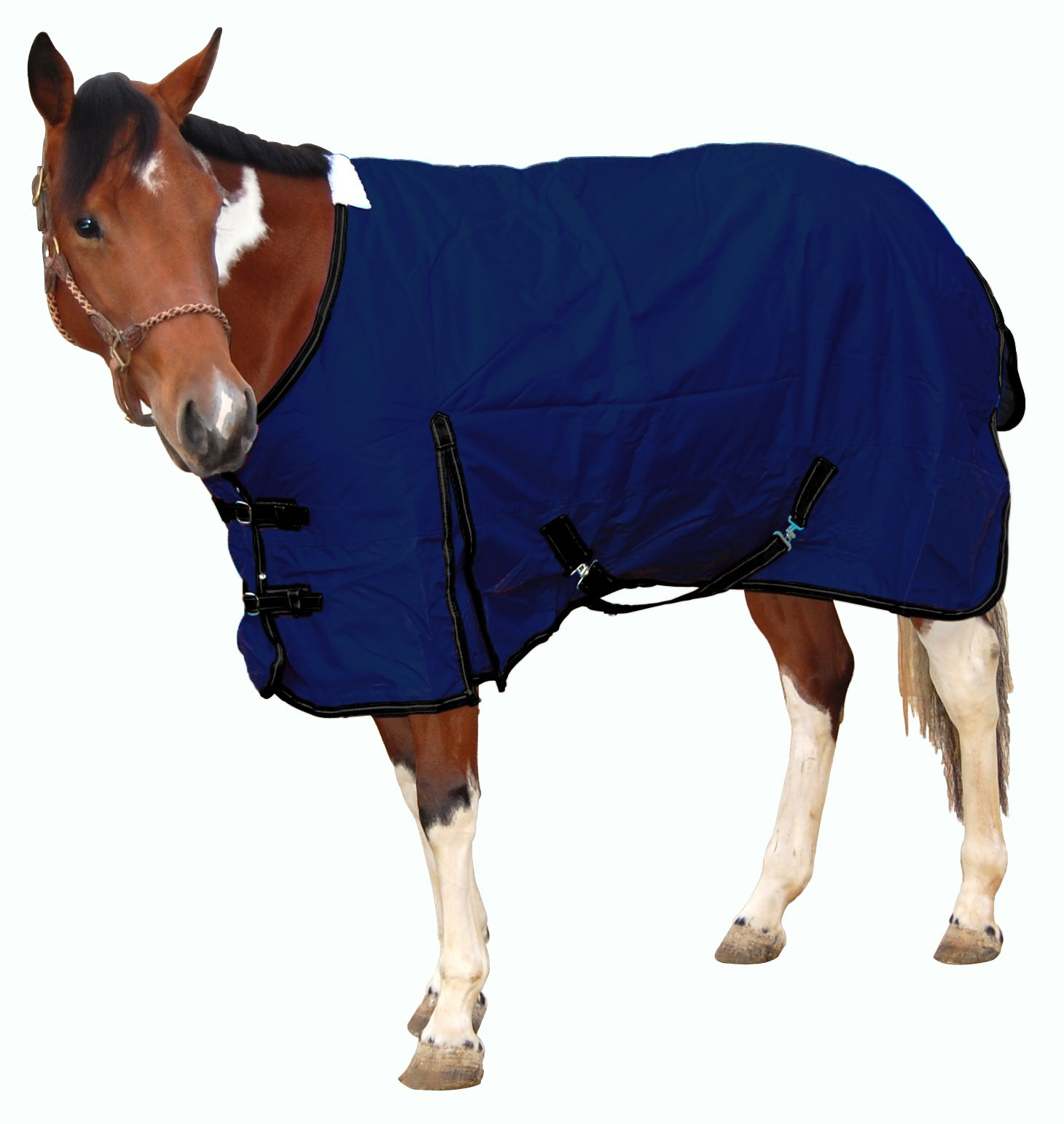 Royal Hamilton WB-600D-NV-L Turnout Horse Blanket Navy Blue with Black Trim, 81-Inch, Large