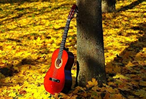 Guitar In The Woods Art Print Canvas Poster,Home Wall Decor(28x42 inch)