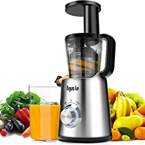 Amazon.com: Argus Le Masticating Juicer Lento, Extractor de ...