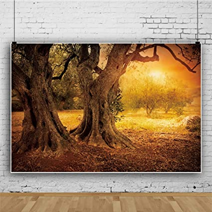 Leyiyi 15x10ft Enchanted Forest Backdrop Lovely Autumn Sunny Ancient Sacred Tree Dead Leaves of Autumn Photography Background Cowboy Photo Portrait Vinyl Studio Video Props