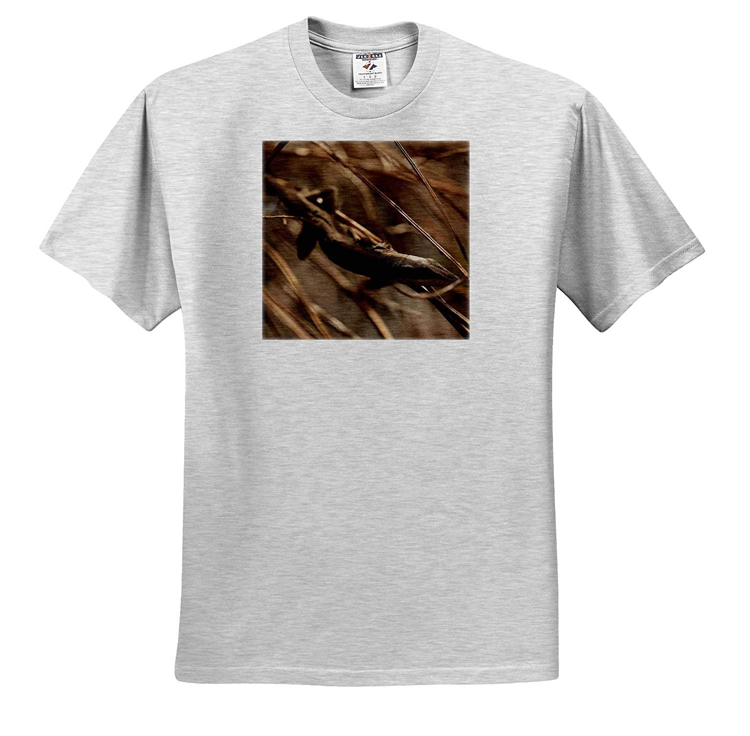 3dRose Stamp City Animals Photograph of a Green Anole Relaxing in Some Dried Ferns - T-Shirts