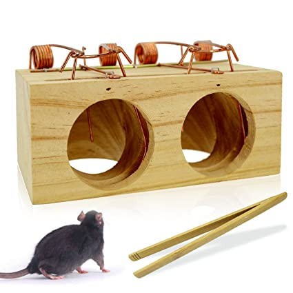 OLICTA Mouse Trap Wood That Work Humane Snap Rodent Killer Effective and  Sensitive Mouse Catcher, Safe around Children and Pets by