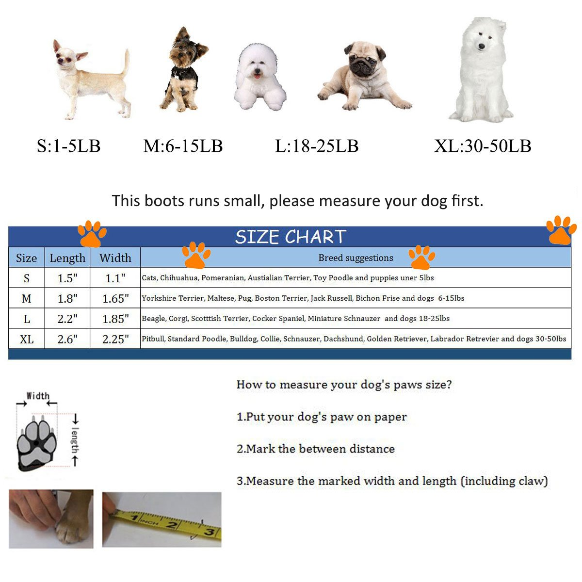 Corgi age weight chart berry blog dog ideal weight chart image collections free any examples sizes by choice nvjuhfo Choice Image