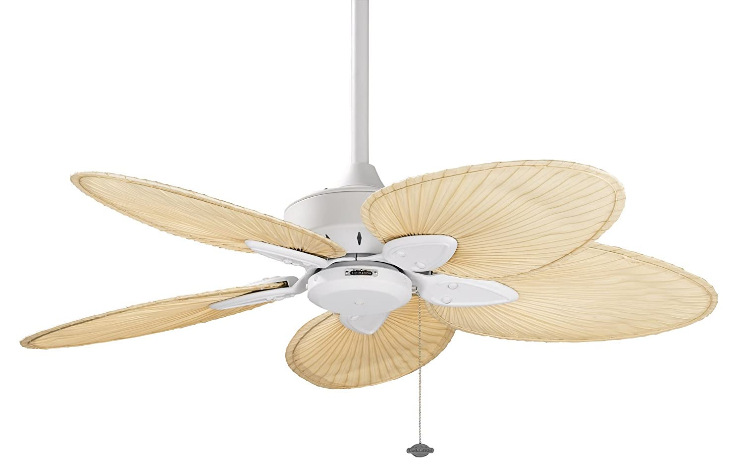 Fanimation windpointe 22 inch matte white with natural palm fanimation windpointe 22 inch matte white with natural palm narrow oval blades with pull chain fp7500mw celing fans with leaves amazon mozeypictures Choice Image