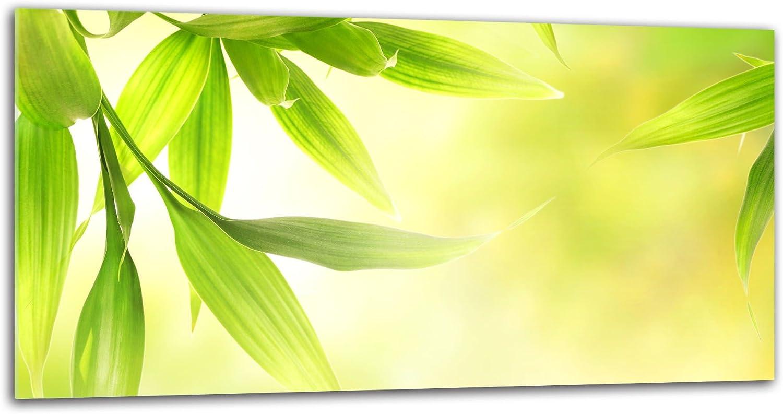 decorwelt Panel de Vidrio antisalpicaduras para Cocina Color Verde 80 x 40 cm