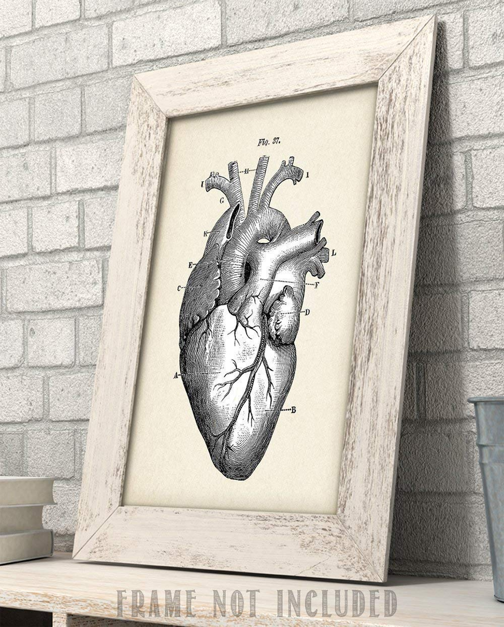 Anatomical Heart Painting High Quality Great Gift for Horror Lover 11x14 Art Print