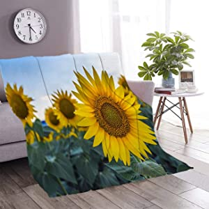 Sunflower Throw Blankets for Unisex Adult Kid Baby Sunflowers Garden,Have Abundant Health Benefits Sunflower Oil Improves Skin Health and Promote Flannel Throw Blanket for Couch Bed,50Wx70L Inch