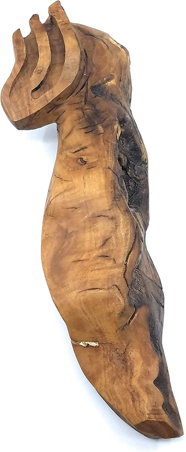 14 x 3 x 1 Ayuni Gifts of the World Extra Large Hand Carved Olive Wood Mezuzah Case Made in Israel