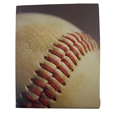 Staples Two Pocket Paper Folder ~ Baseball Folder (Cowhide and Seam): Toys & Games
