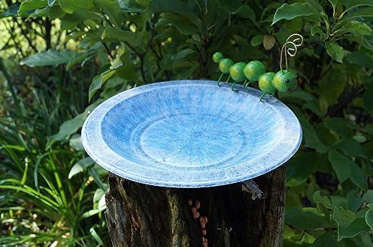 Bebedero para pájaros Amicaso con oruga: Amazon.es: Jardín