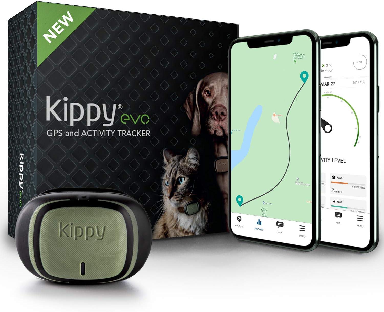 KIPPY - EVO - El Nuevo Collar GPS para Perros y Gatos - Seguimiento de Actividad, 38 gr, Waterproof, Bateria 10 dias, Green Forest