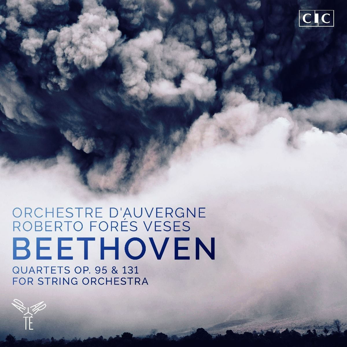 Ludwig van Beethoven (1770-1827) - Page 13 71A6a2ZONkL._SL1200_