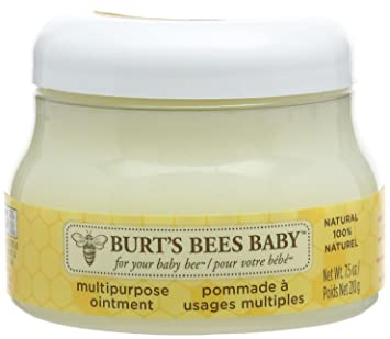 Burt S Bees Baby Multipurpose Ointment 210g Amazon Ca Beauty