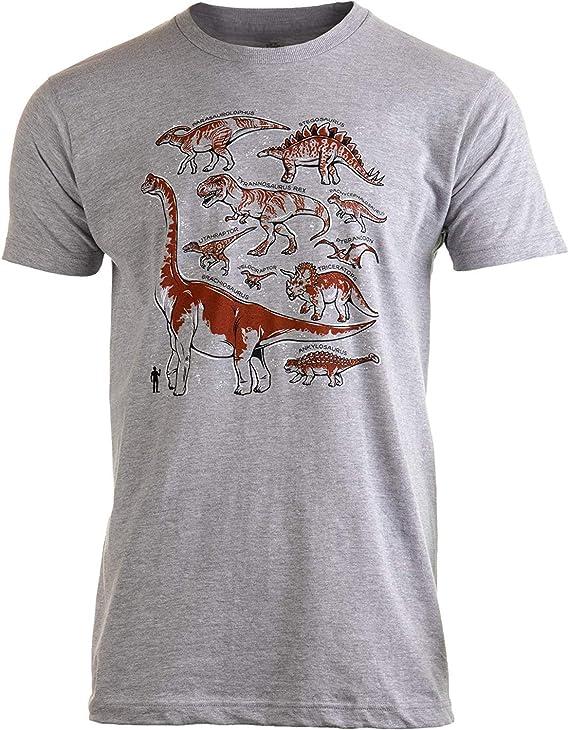 funny cat Especies de Dinosaurios | Dino Fan Party Costume T-Rex Raptor Camisa Hombre Mujer Camiseta, 3XL: Amazon.es: Ropa y accesorios