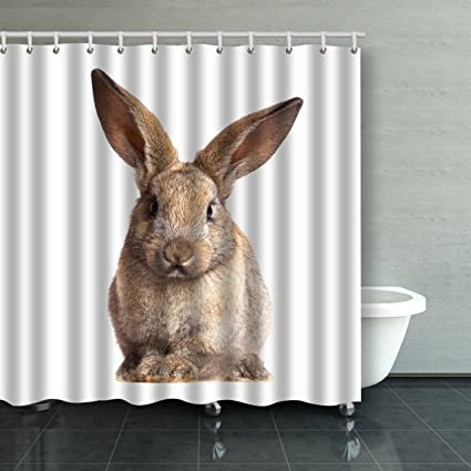 Emvency Shower Curtain Waterproof Bunny Cute Rabbit On The White Background Cotton Sofa With Plastic Hooks