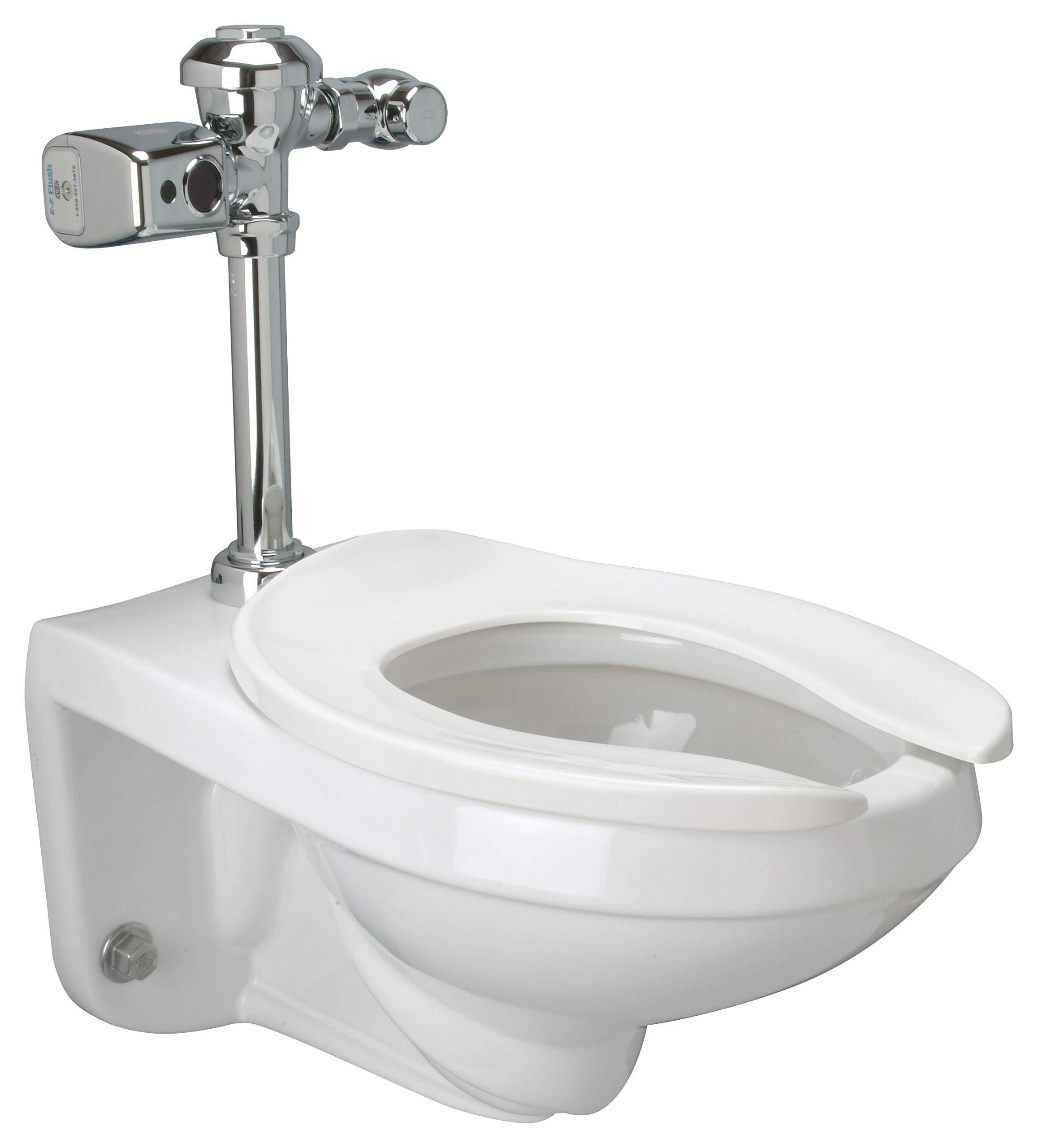 Zurn Z5615.270.01.00.00 Toilet White by Zurn