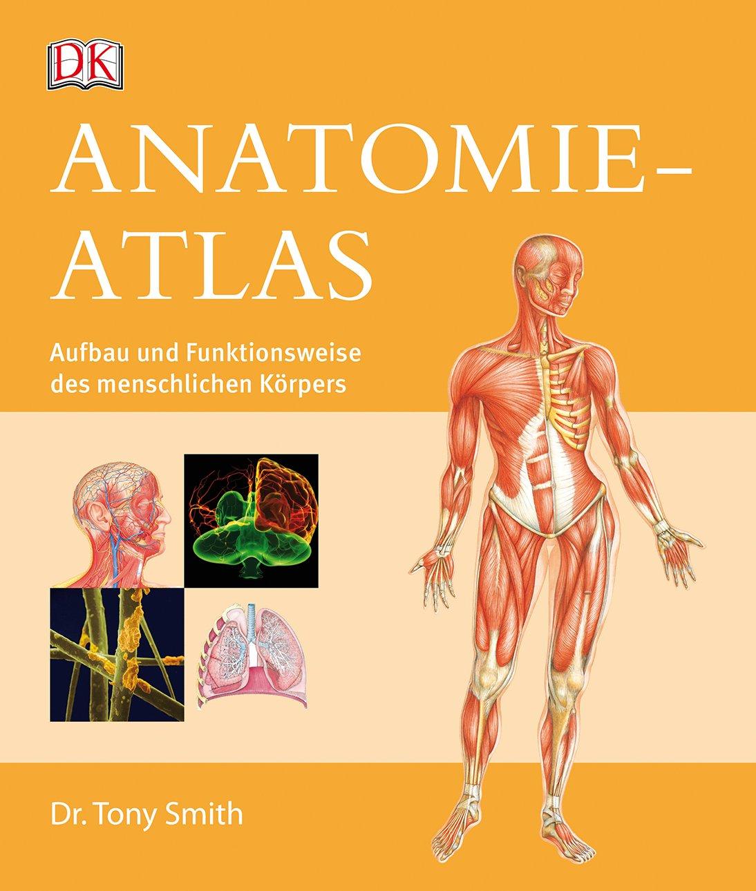 Anatomie-Atlas: Aufbau und Funktionsweise des menschlichen Körpers ...
