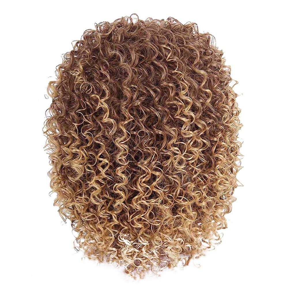 DDLmax Short Curly Wigs for Black Women Synthetic Hair Blonde and Brown Afro Wig by DDLmax