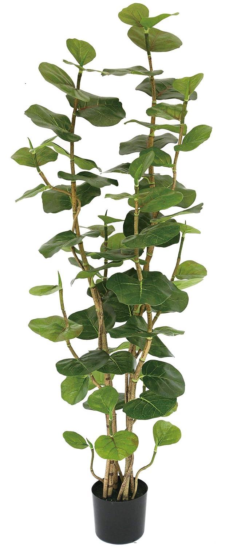 人工植物 造花 フェイクグリーン シーグレープ1600 B07H3Q79PD