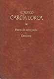 Canciones (Spanish Edition)