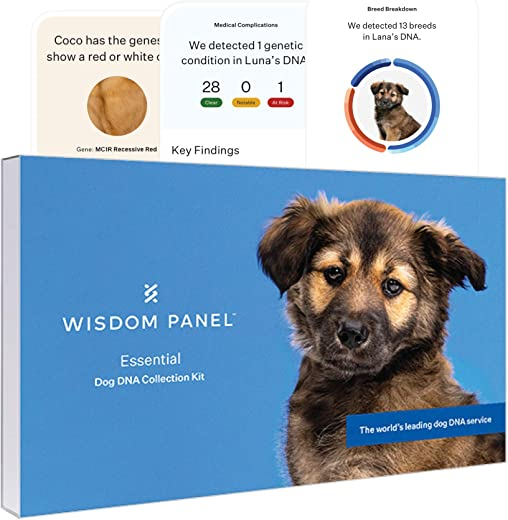 Wisdom Panel Essential, New and Improved Dog DNA Test for...