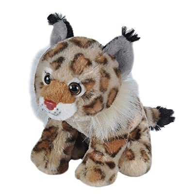 Wild Republic Bobcat Plush, Stuffed Animal, Plush Toy, Gifts for Kids, Cuddlekins, 8 Inches: Toys & Games