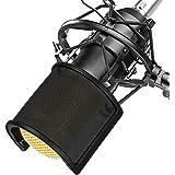 Microphone Pop Filter, TAIKUU Metal Mesh and Foam Layer Mic Pop Filter, Handheld Microphone Isolation Shield Mask, Windscreen Shield Mount for Recording Studio, Black